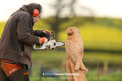 A Decent Exposure Dave Bytheway Chainsaw Carving Video